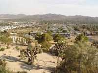 View of Yucca Valley