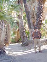 29 Palms Oasis 2