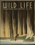 Wild_life copy
