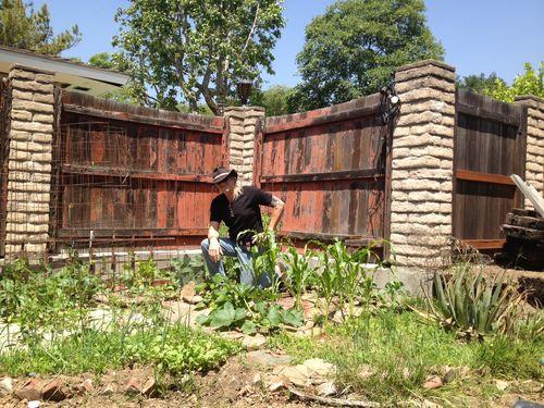 Garden-week-6